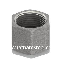 ASTM B564 Nickel 200 Cap Hexagon Head‎‎ manufacturer in India
