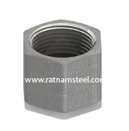 ASTM B564 Nickel 200 Hosetail Nut Only Fastening Thread manufacturer in India
