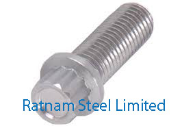 Stainless Steel 201/202 12 Point Flange Bolt manufacturer in India