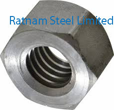 Stainless Steel 201/202 Acme Nuts manufacturer in India