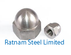 Stainless Steel 201/202 Cap Nutsmanufacturer in India