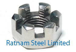 Stainless Steel 201/202 Castle Nuts manufacturer in India
