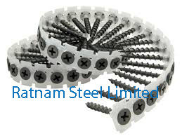 Stainless Steel 201/202 Collated Screw manufacturer in India