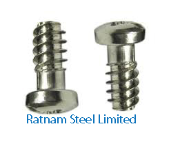 Stainless Steel 201/202 Euro Screw manufacturer in India
