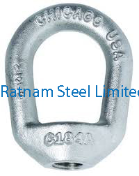 Stainless Steel 201/202 Forged Eye Nut manufacturer in India