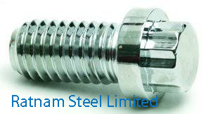 Stainless Steel 201/202 Ferry Cap Screws manufacturer in India