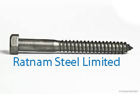 Stainless Steel 201/202 Lag Bolt manufacturer in India