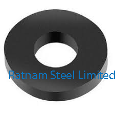 Super Duplex Steel 2507 Neoprene Washer manufacturer in India