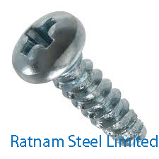 Stainless Steel 201/202 Phillips Head Screw manufacturer in India