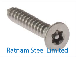 Stainless Steel 201/202 Security head screw manufacturer in India