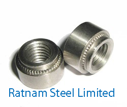 Stainless Steel 201/202 Self Clinching Nut manufacturer in India
