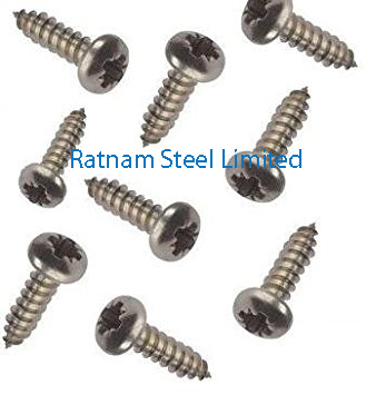 Stainless Steel 201/202 Self Tapping Screw manufacturer in India