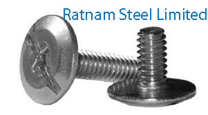 Stainless Steel 201/202 Sidewalk Bolts manufacturer in India