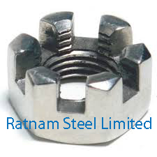 Stainless Steel 201/202 Slotted Nuts manufacturer in India