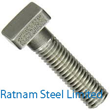 Stainless Steel 201/202 Square Head Bolts manufacturer in India