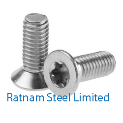 Stainless Steel 201/202 Thread Rolling Screw manufacturer in India