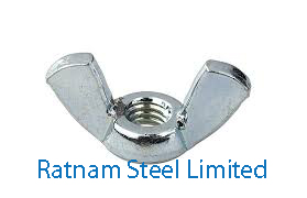 Stainless Steel 201/202 Wing Nuts manufacturer in India