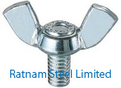 Stainless Steel 201/202 Wing Bolts manufacturer in India
